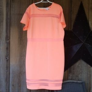 Boutique+  Dress size 3x NWT